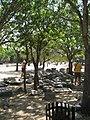 Rhodes, Greece - panoramio (73).jpg