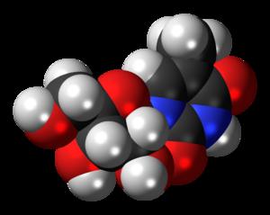 5-Methyluridine - Image: Ribothymidine 3D spacefill