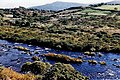 Ring of Kerry - River Laune - geograph.org.uk - 1632258.jpg
