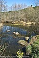 Rio Vouga - Portugal (14076290983).jpg
