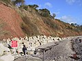 Rip rap, Seaton Hole - geograph.org.uk - 770914.jpg