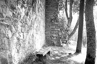 Riseberga kloster - KMB - 16001000017552.jpg