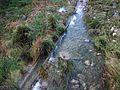 Riu Gorgos amb aigua al seu pas per Xaló.JPG