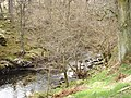 River Enrick - geograph.org.uk - 393257.jpg