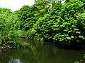 River Lagan near Drumbeg - geograph.org.uk - 840341.jpg