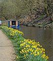 Rochdale Canal (26292625660).jpg