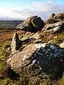 Rocks on Bieldy Pike - geograph.org.uk - 303431.jpg