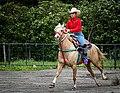Rodeo in Panama 04.jpg