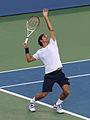 Roger Federer Cincy 2012.jpg