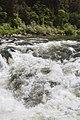Rogue River (17607254745).jpg