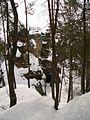 Rotstejn zimni skalni suk od sz.jpg