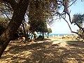 Ruines Romaines Tipaza 16.jpg
