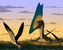 Illustration of a T. sethi and a skimming bird