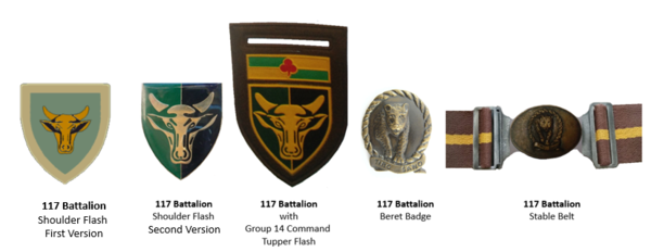 SADF 117 Battalion insignia v2