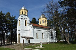 Saint George Church in Trudovets - side.jpg