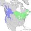 Salix lucida & lasiandra range map 2.png