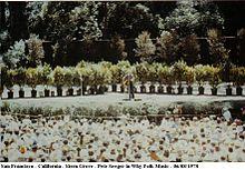 Pete Seeger concerto gratuito a Stern Grove, San Francisco, nel 1978