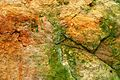 Sandstone Surface. RHS Wisley Surrey UK.jpg