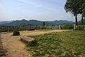 Sasayama Castle17s4592.jpg