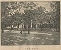 Saski ogród w Warszawie - Cukiernia (60535).jpg