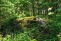 Schalenstein nördlich von Heidenreichstein 2014-05 NÖ-Naturdenkmal GD-123.jpg