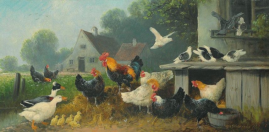 Scheuerer Hühnerhof