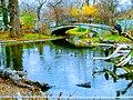 Schonbrunn zoo.jpg