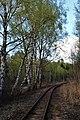 Sedas purvs - dzelzceļa pagrieziens.jpg