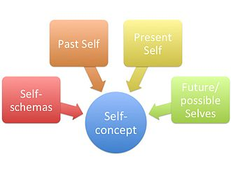 Self-concept - One's self-concept is made up of self-schemas, and their past, present, and future selves.