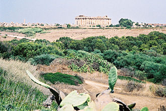 Temple E (Selinus) - Image: Selinunte East Hill bjs 1