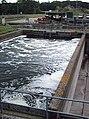 Sewage works, Rayleigh - geograph.org.uk - 544825.jpg