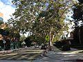 Sherman Oaks, Los Angeles, CA, USA - panoramio (142).jpg