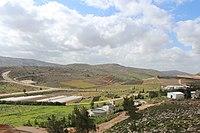 Shiloh view IMG 3077.JPG