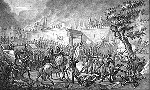 A battle is shown raging outside a fortress, with some attackers attempting to use ladders to climb the large wall.