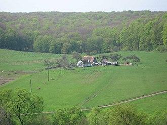 Albești, Mureș - Image: Sighisoara country farm