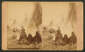 Sitting Bull's Camp - sectional view, by Cross, W. R. (William R.).png