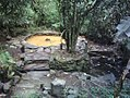 Situs Sendhang Pancarasa, KedungBanteng, Banyumas.jpg