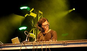 Skrillex - Skrillex performing live at the 2011 Ottawa Bluesfest