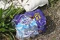 Small tortoiseshell (Aglais urticae) mistaking litter for flower, Oban, July 2020.jpg