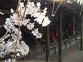 Sofuku-Temple-Fukuoka-Buddhist-Statues.jpg