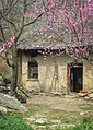Spring in the Qinling Mountains, Xi'an (11622405064).jpg