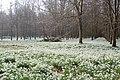 Spring snow at Welford Park^ - geograph.org.uk - 1185198.jpg