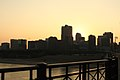 St Louis Downtown from Eads Bridge.jpg