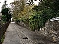 St Simon's Lane Plymouth - geograph.org.uk - 997752.jpg