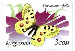 Stamp of Kyrgyzstan 214.jpg
