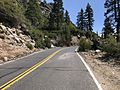 Stanislaus National Forest, Pinecrest, United States May 07, 2017 015535.jpeg