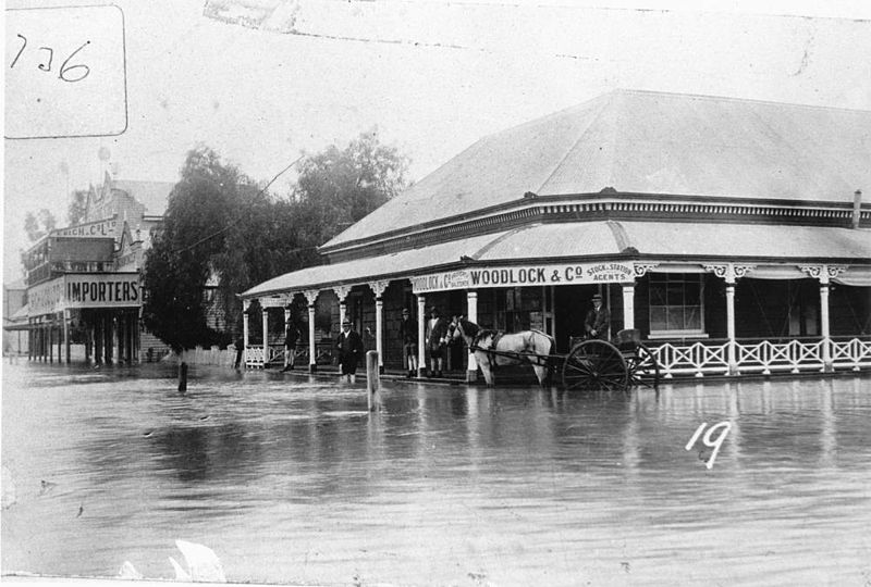 File:StateLibQld 1 107612 Woodlock's stock and station agent's office in the Goondiwindi floods of 1921.jpg