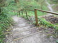 Steps down from the high level footpath at Amberley Working Museum - geograph.org.uk - 1245588.jpg