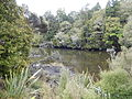 Stewart Island Ryans Creek.jpg