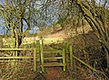 Stile on public footpath - geograph.org.uk - 1708622.jpg